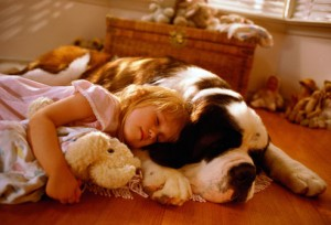 girl_with_saint_bernard 3