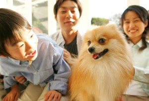 pomeranian_with_family 5